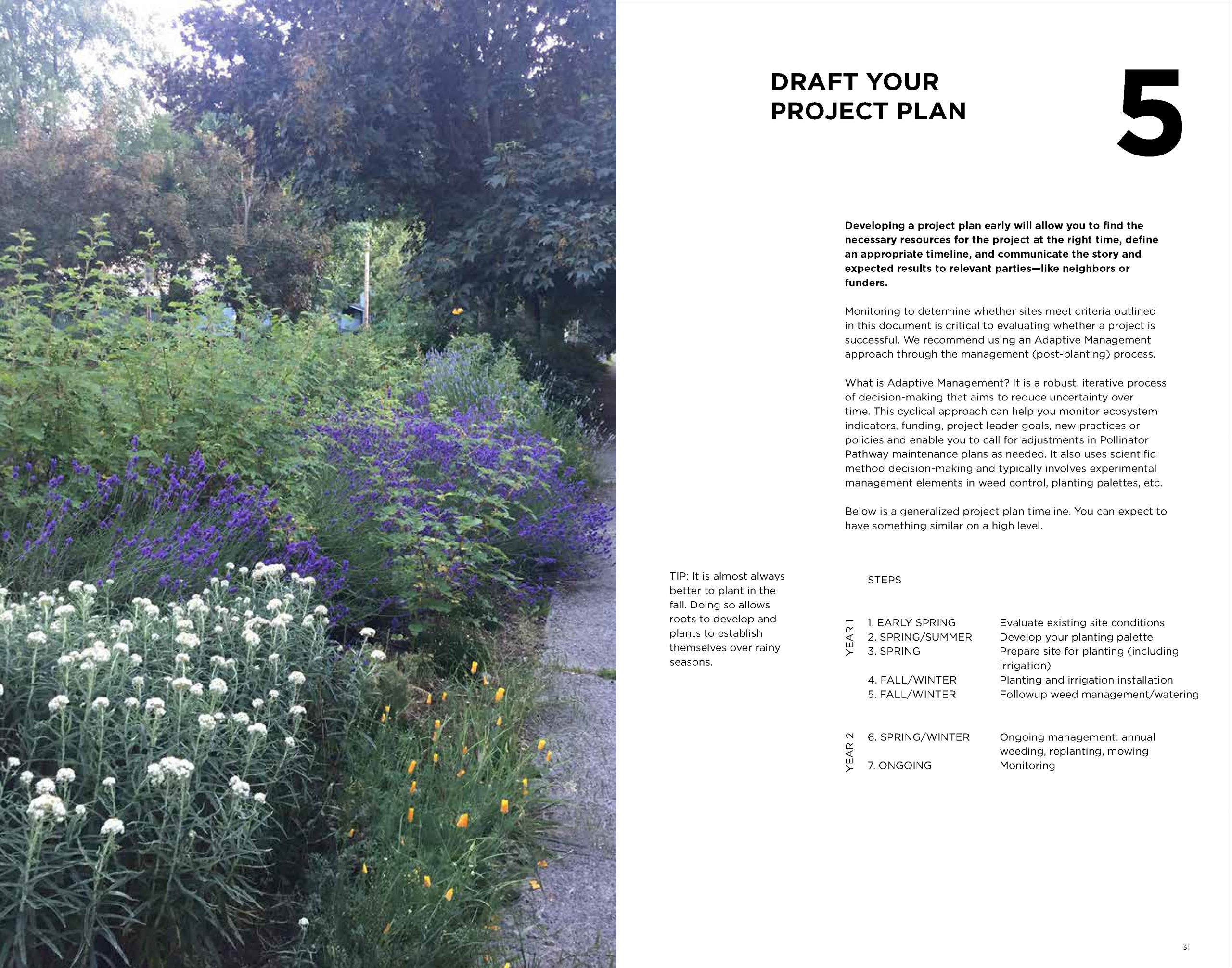 POLLINATOR-PATHWAY-TOOLKIT_Page_18